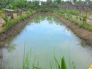 Water-ground