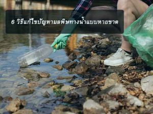 How-to-solve-the-water-pollution-problem-cured-news-site